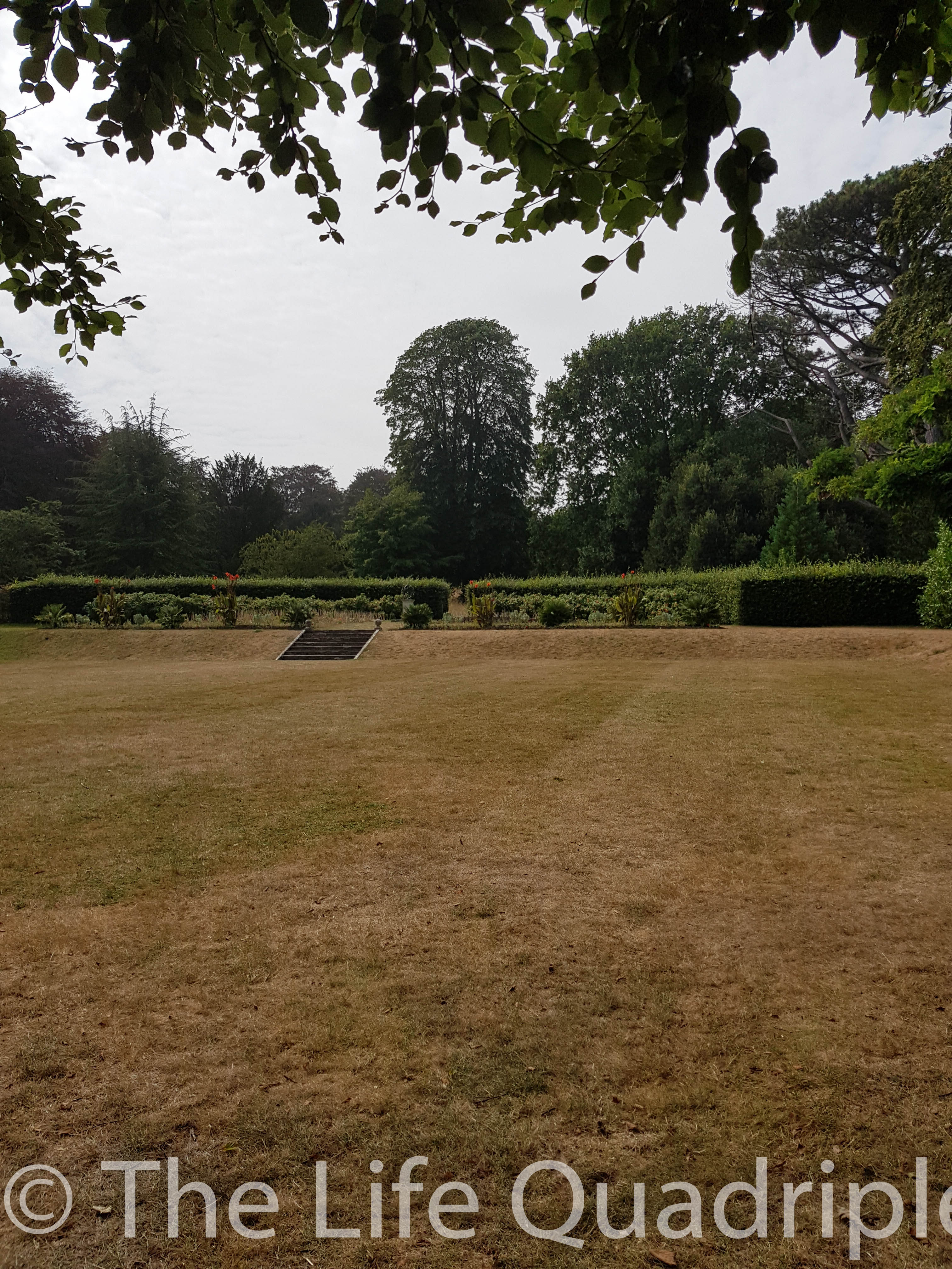 A large flat grassy area with hedges and trees in the background